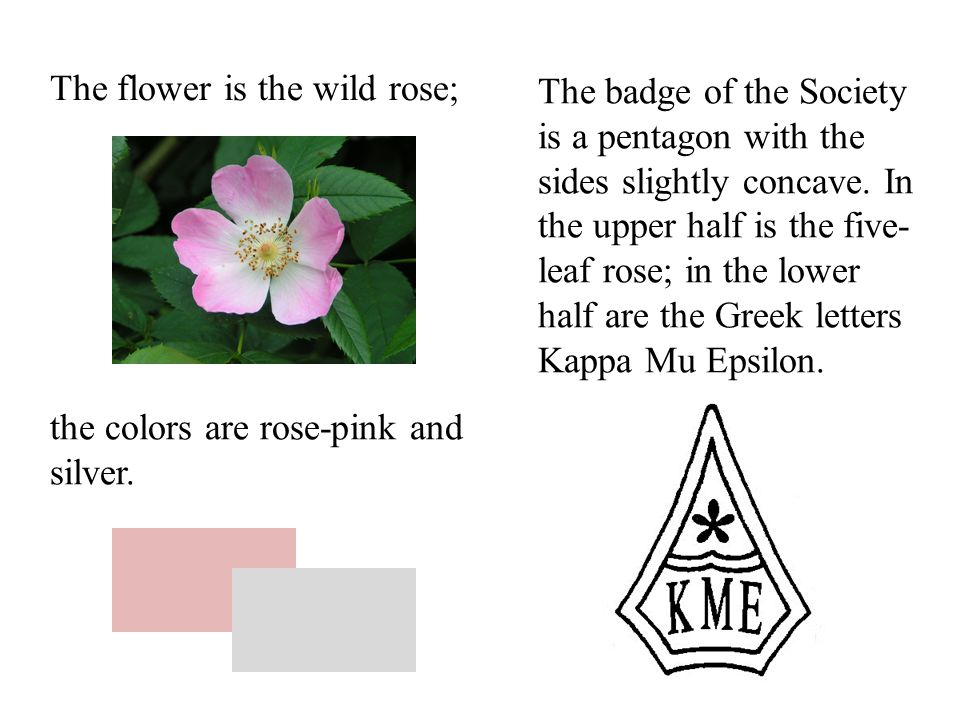 The flower is the wild rose; The badge of the Society is a pentagon with the sides slightly concave.