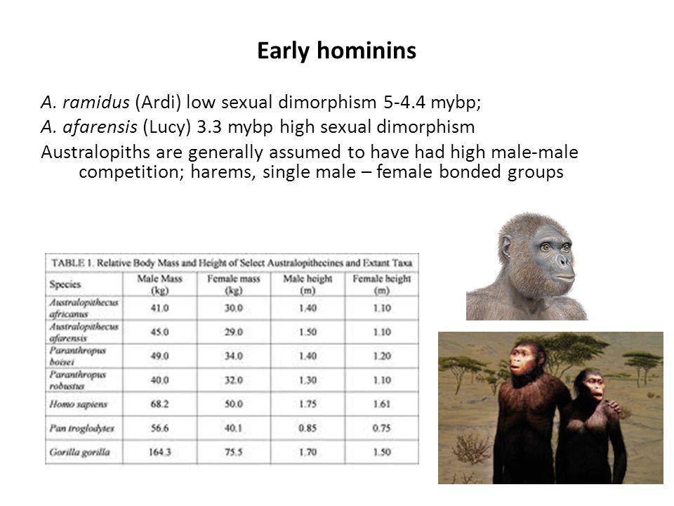 Early hominins A. ramidus (Ardi) low sexual dimorphism 5-4.4 mybp; A.