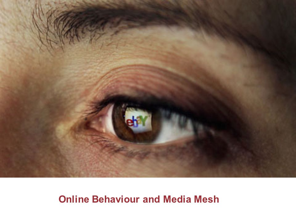Online Behaviour and Media Mesh