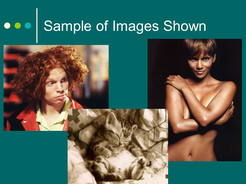 Sample of Images Shown