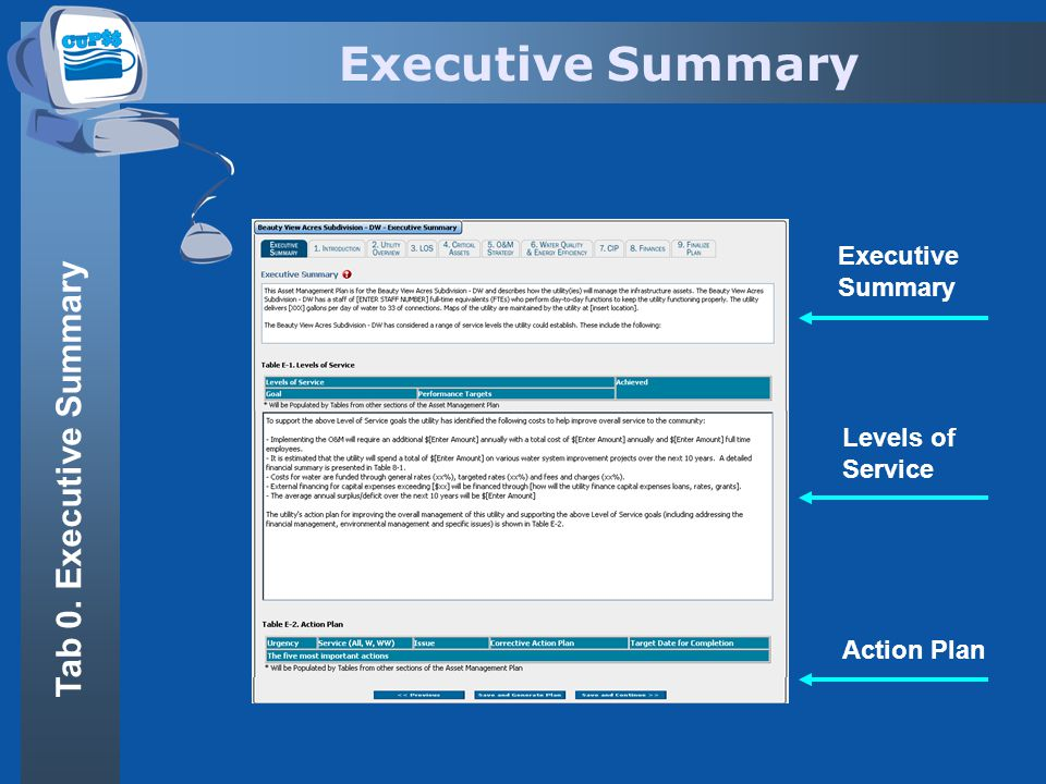 Executive Summary Levels of Service Action Plan Tab 0. Executive Summary