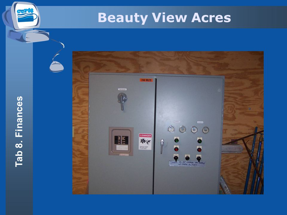 Beauty View Acres Tab 8. Finances