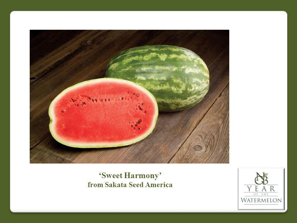 Sweet Harmony from Sakata Seed America