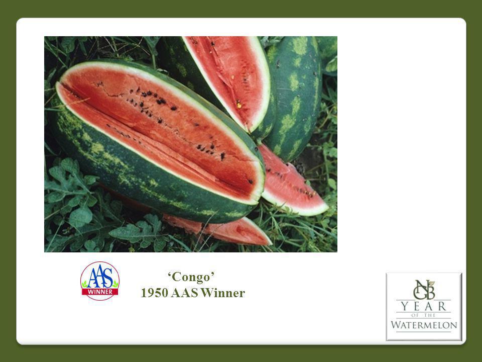 Congo 1950 AAS Winner