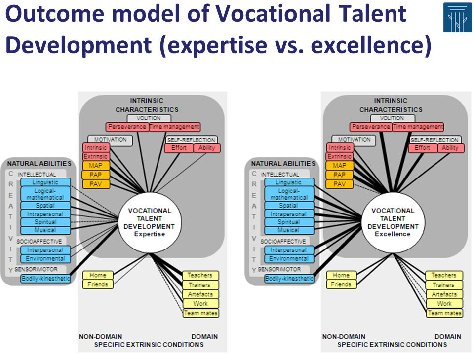 Outcome model of Vocational Talent Development (expertise vs. excellence)