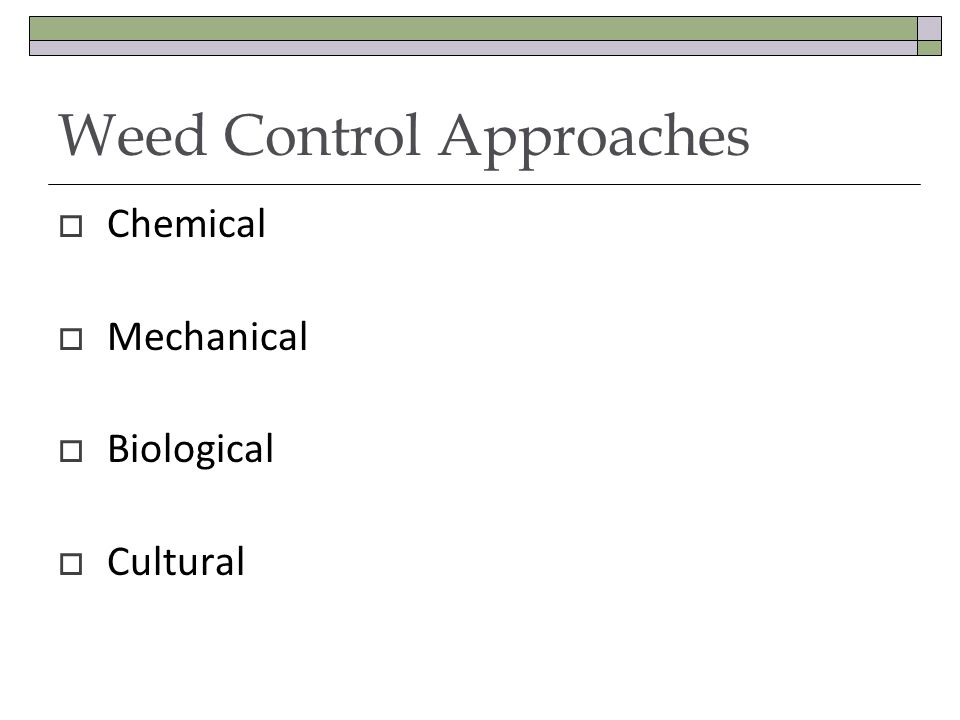 Weed Control Approaches Chemical Mechanical Biological Cultural