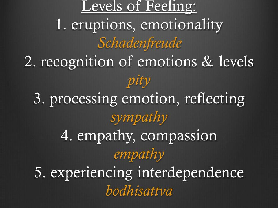 Levels of Feeling: 1. eruptions, emotionality Schadenfreude 2. recognition of emotions & levels pity 3. processing emotion, reflecting sympathy 4. emp
