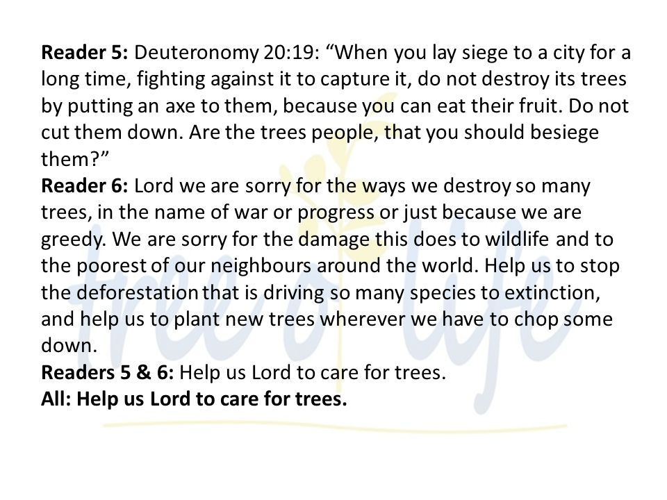 Reader 5: Deuteronomy 20:19: When you lay siege to a city for a long time, fighting against it to capture it, do not destroy its trees by putting an axe to them, because you can eat their fruit.