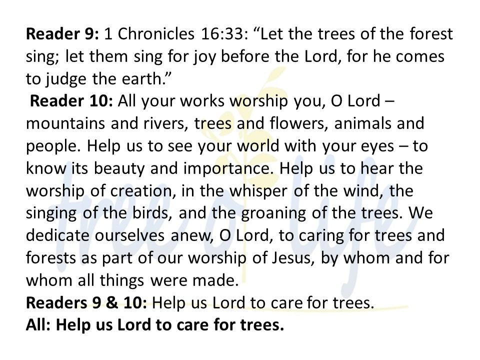 Reader 9: 1 Chronicles 16:33: Let the trees of the forest sing; let them sing for joy before the Lord, for he comes to judge the earth.
