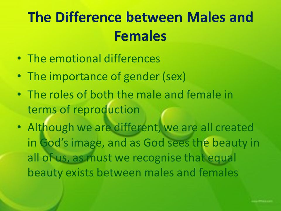 The Difference between Males and Females The emotional differences The importance of gender (sex) The roles of both the male and female in terms of reproduction Although we are different, we are all created in Gods image, and as God sees the beauty in all of us, as must we recognise that equal beauty exists between males and females
