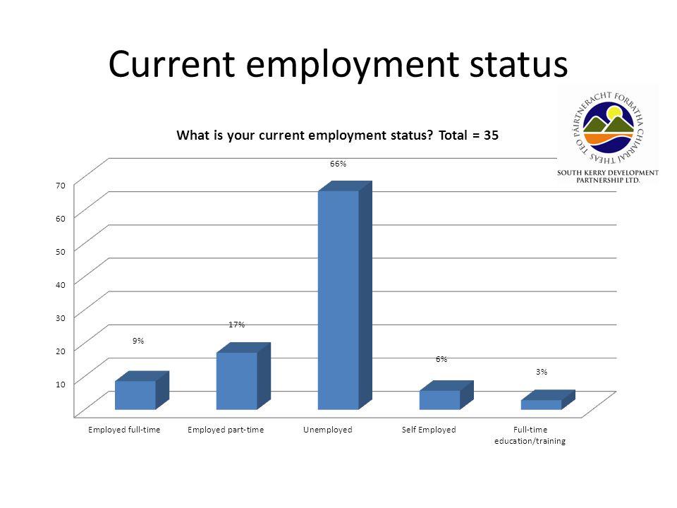 Current employment status