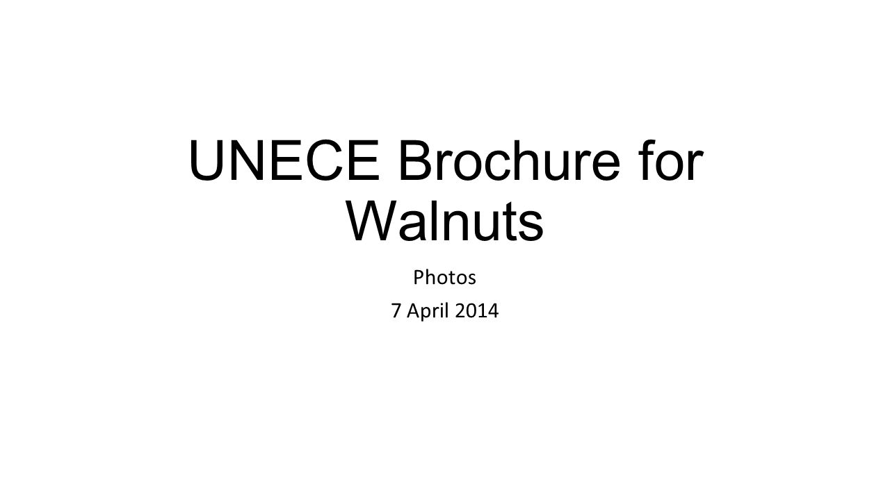 UNECE Brochure for Walnuts Photos 7 April 2014