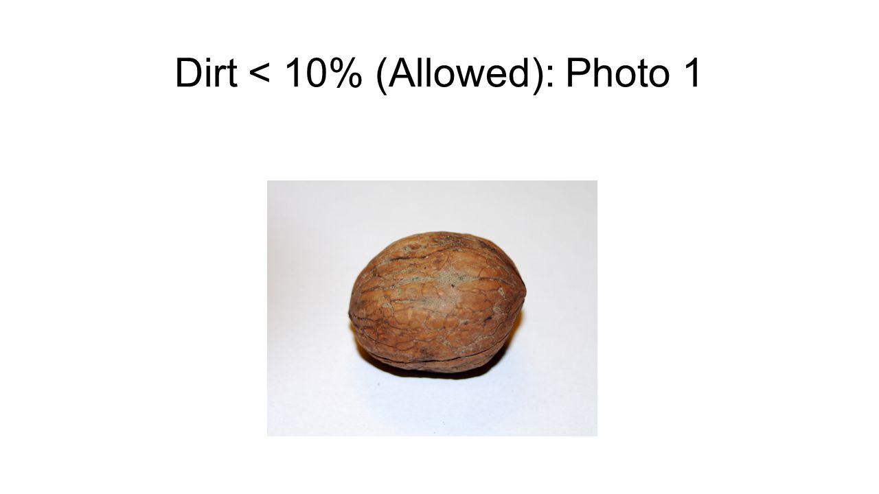 Dirt < 10% (Allowed): Photo 1