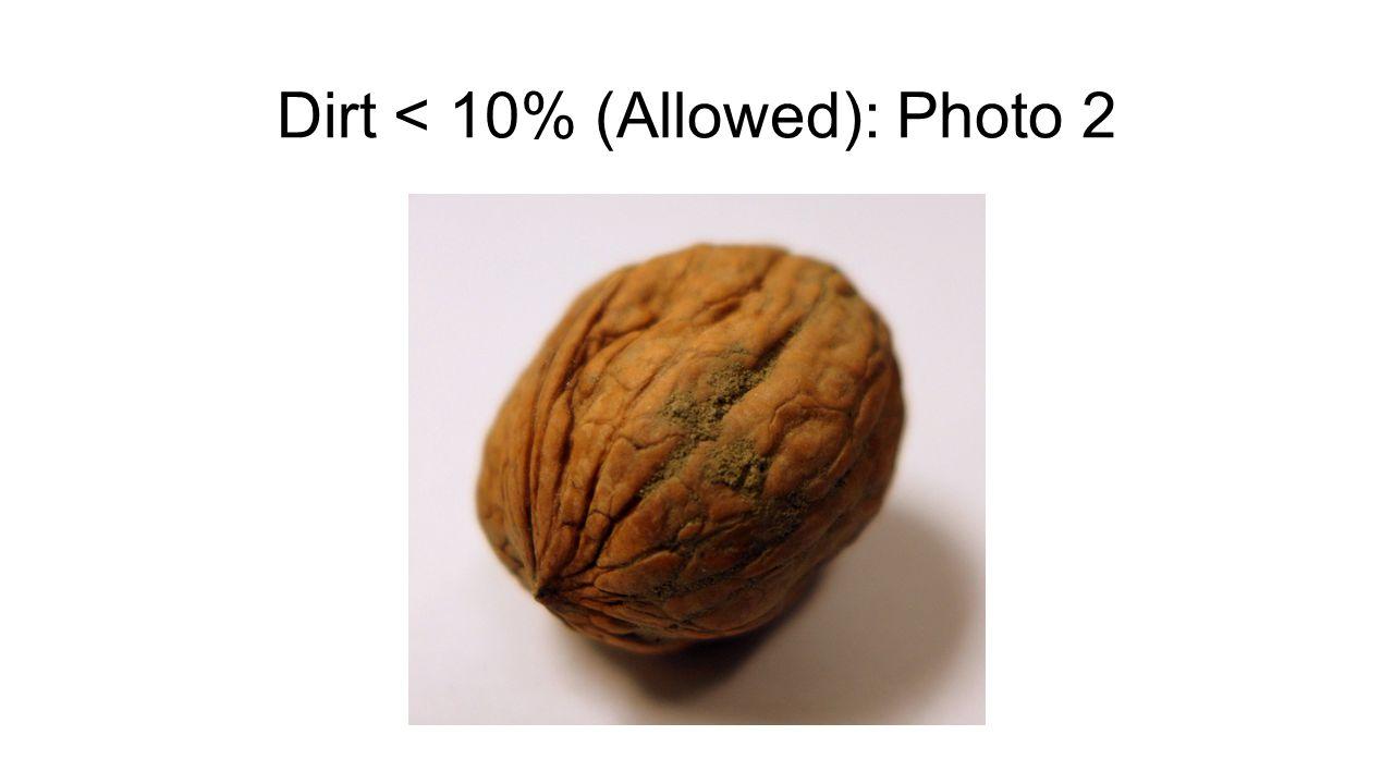 Dirt < 10% (Allowed): Photo 2
