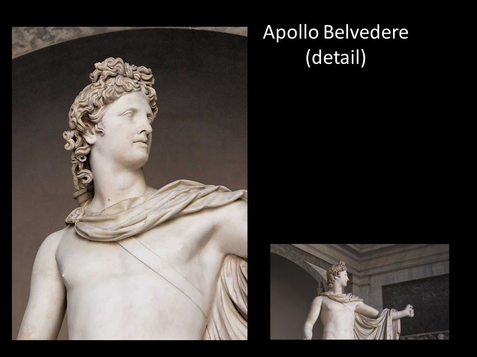 Apollo Belvedere (detail)