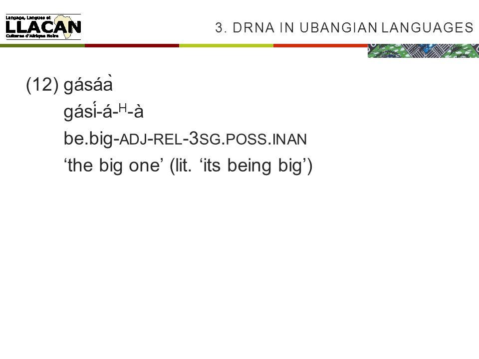 3. DRNA IN UBANGIAN LANGUAGES (12)gásáà gásí-á- H -à be.big- ADJ - REL -3 SG.