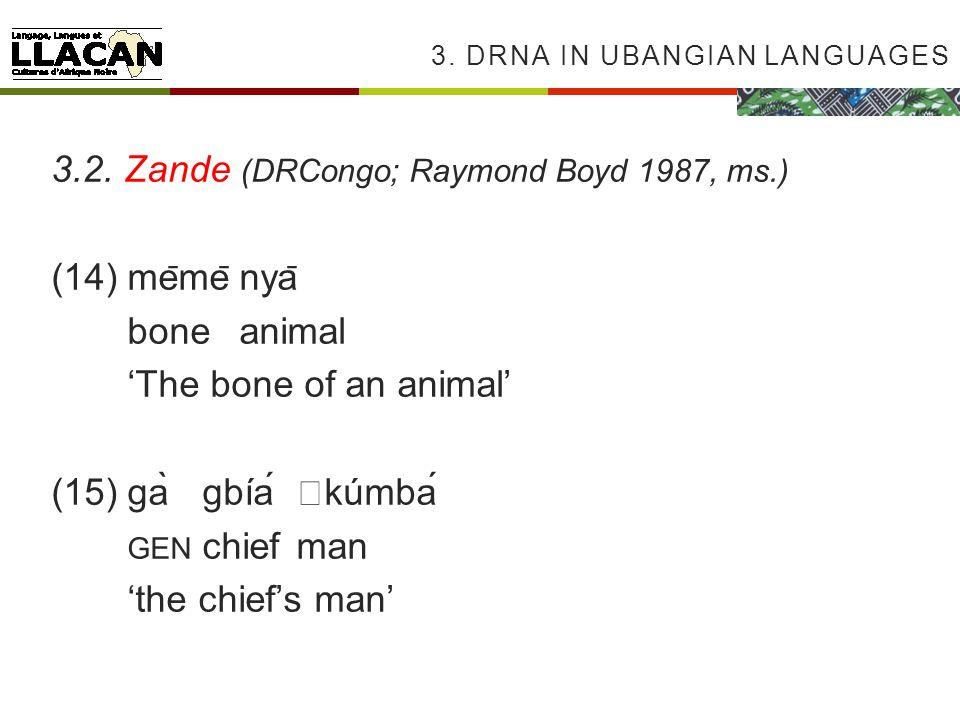 3. DRNA IN UBANGIAN LANGUAGES 3.2.