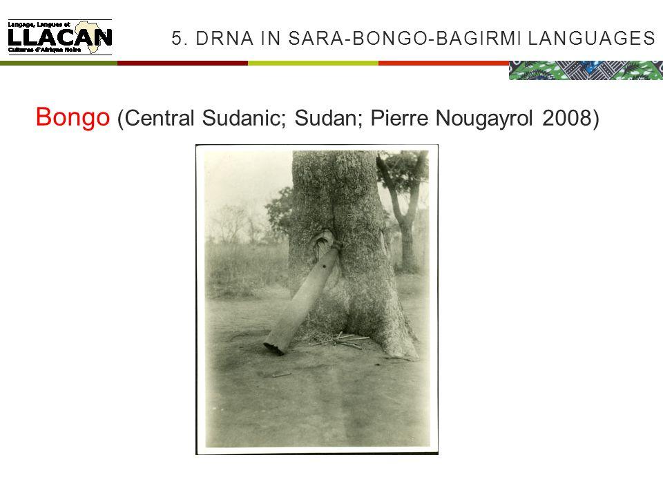 5. DRNA IN SARA-BONGO-BAGIRMI LANGUAGES Bongo (Central Sudanic; Sudan; Pierre Nougayrol 2008)