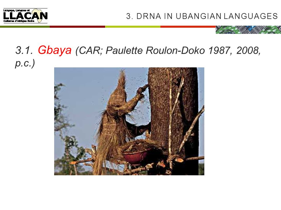 3. DRNA IN UBANGIAN LANGUAGES 3.1. Gbaya (CAR; Paulette Roulon-Doko 1987, 2008, p.c.)