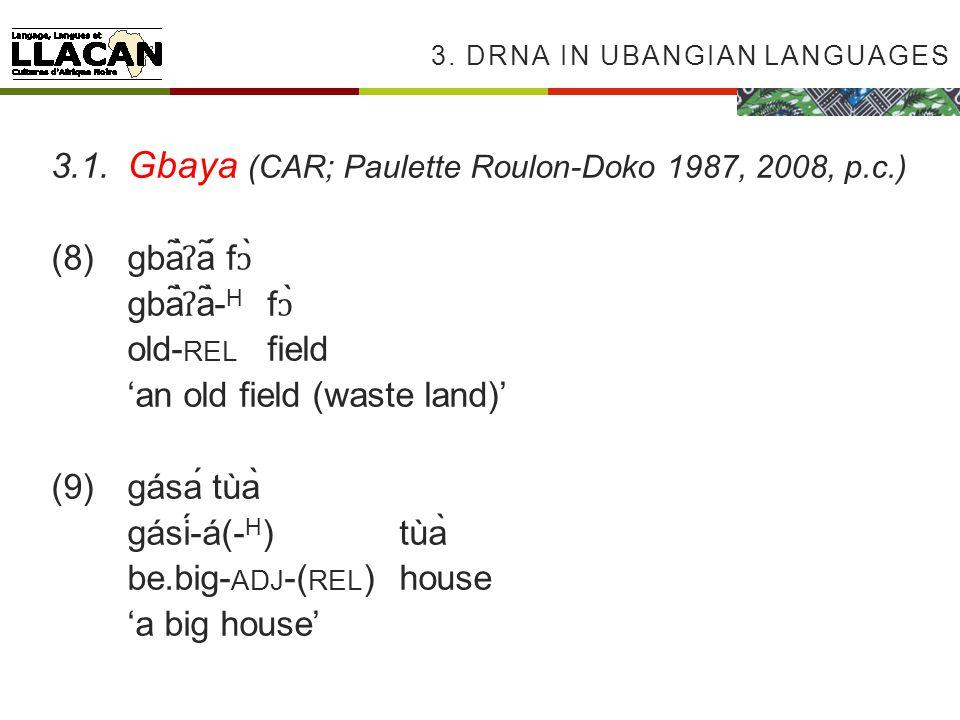 3. DRNA IN UBANGIAN LANGUAGES 3.1.