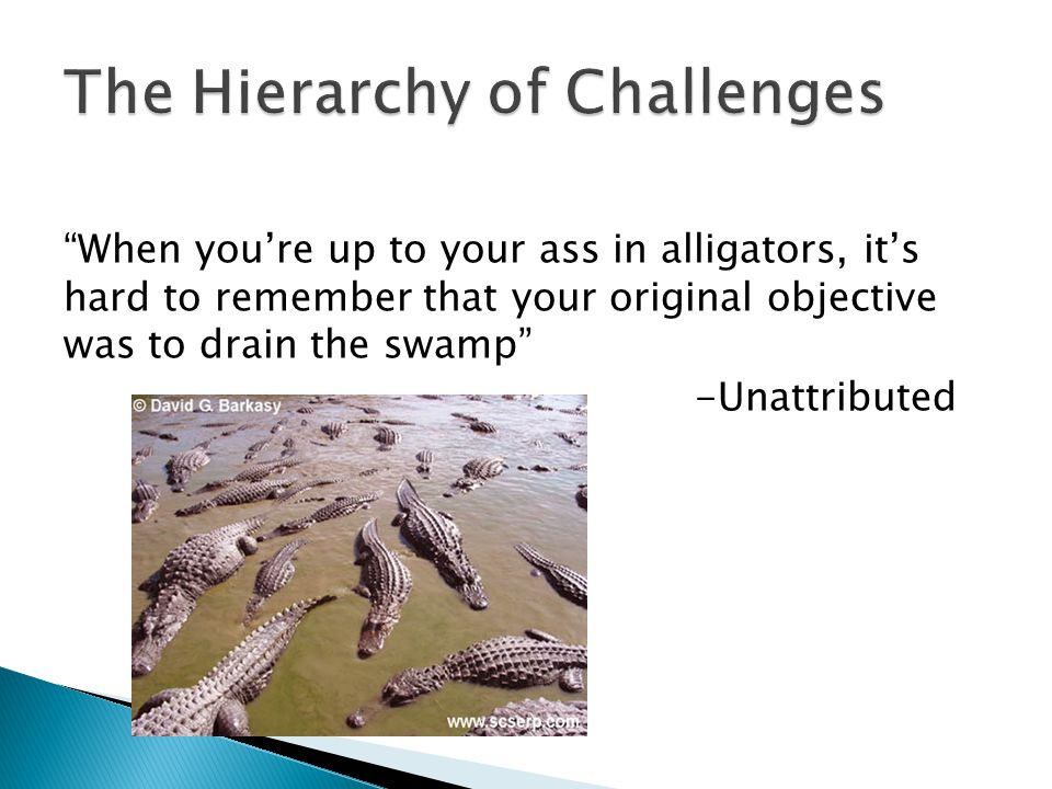 When youre up to your ass in alligators, its hard to remember that your original objective was to drain the swamp -Unattributed