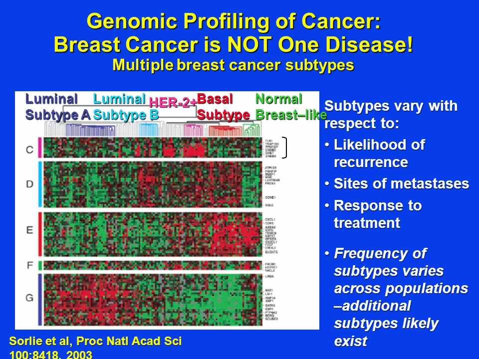 Genomic Profiling of Cancer: Breast Cancer is NOT One Disease! Multiple breast cancer subtypes Luminal Subtype A Luminal Subtype B HER-2+ Basal Subtyp