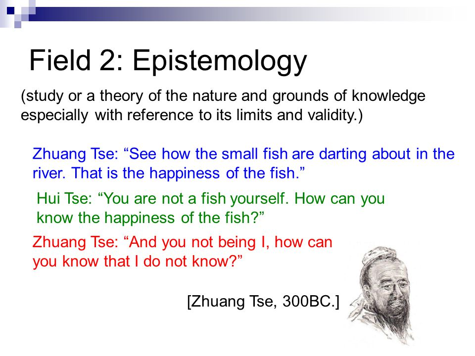 Field 2: Epistemology (study or a theory of the nature and grounds of knowledge especially with reference to its limits and validity.) Zhuang Tse: See