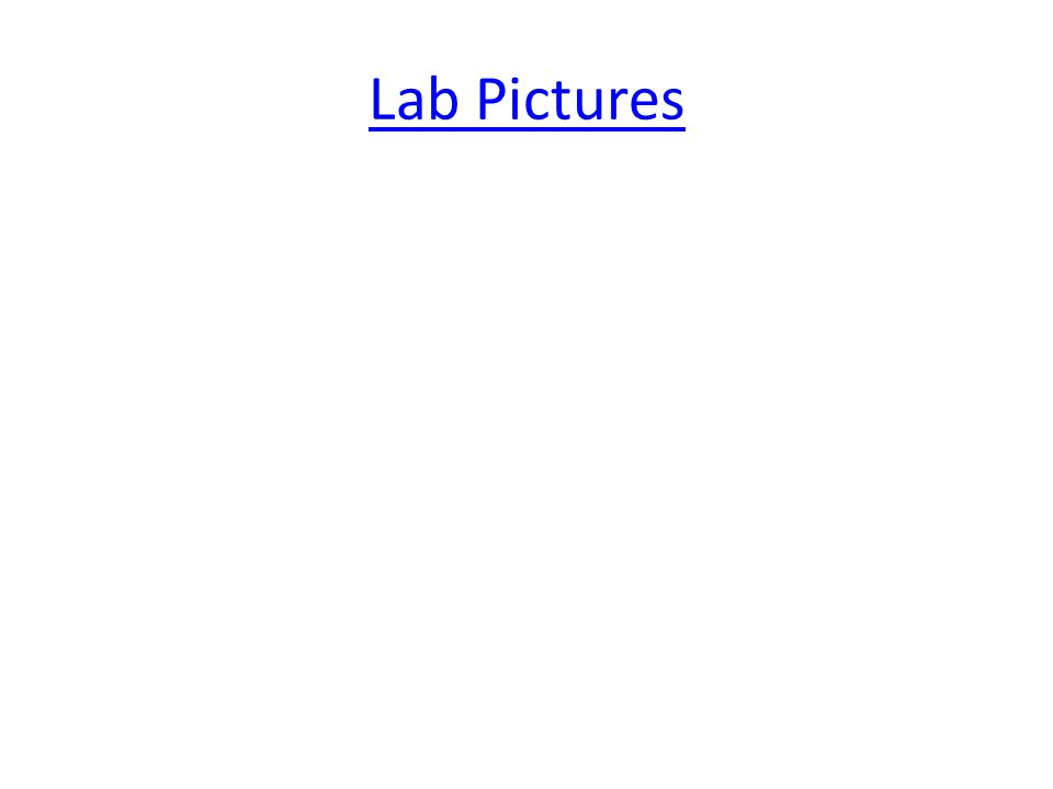 Lab Pictures