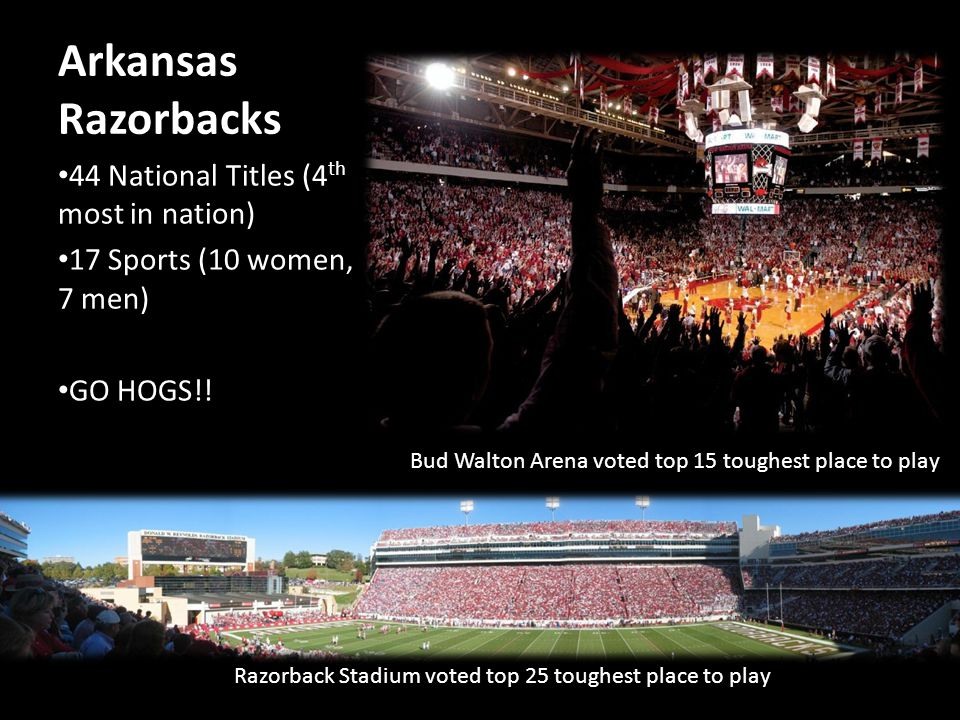 Arkansas Razorbacks 44 National Titles (4 th most in nation) 17 Sports (10 women, 7 men) GO HOGS!.
