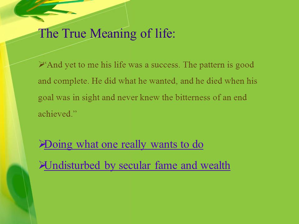 The True Meaning of life: And yet to me his life was a success. The pattern is good and complete. He did what he wanted, and he died when his goal was