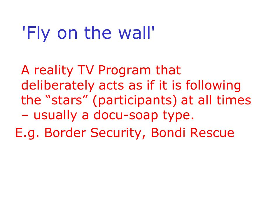 'Fly on the wall' A reality TV Program that deliberately acts as if it is following the stars (participants) at all times – usually a docu-soap type.