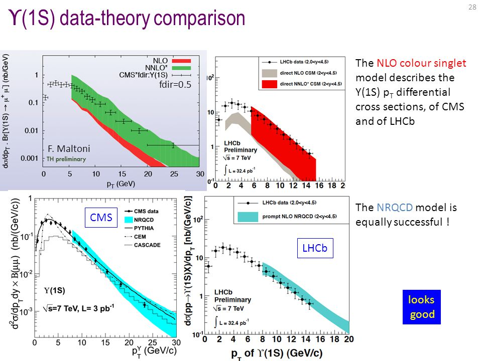 fdir=0.5 F. Maltoni ϒ (1S) data-theory comparison LHCb CMS 28 The NLO colour singlet model describes the Y(1S) p T differential cross sections, of CMS