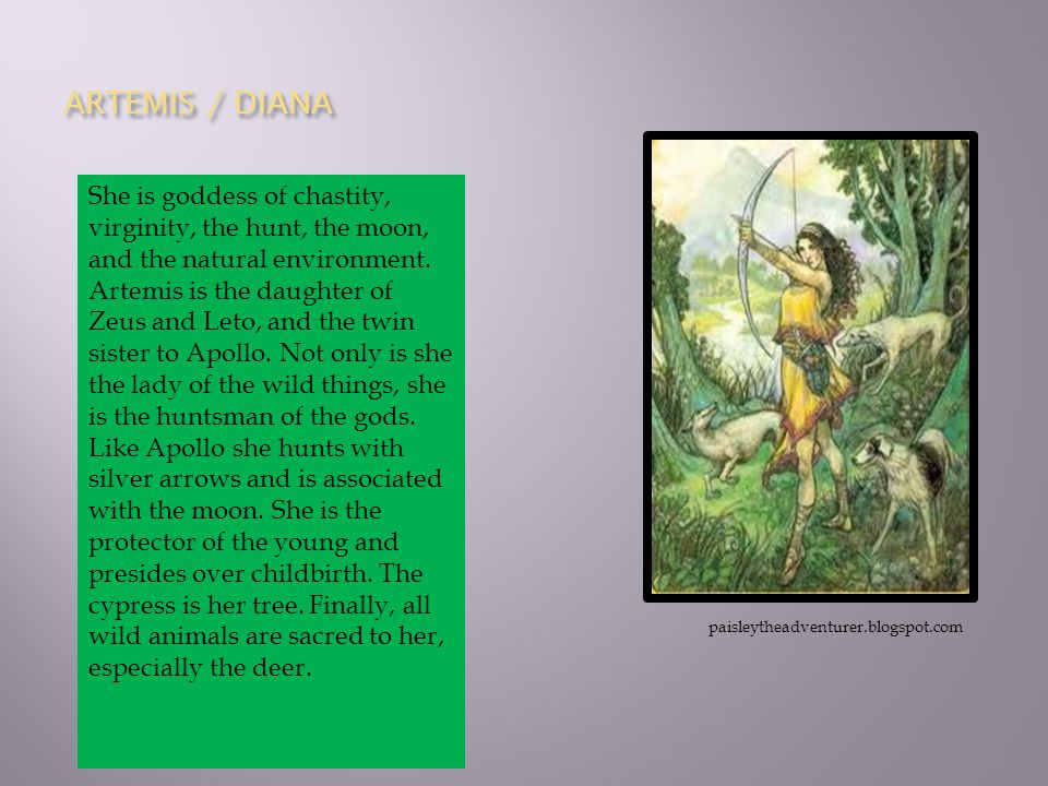 ARTEMIS / DIANA She is goddess of chastity, virginity, the hunt, the moon, and the natural environment. Artemis is the daughter of Zeus and Leto, and