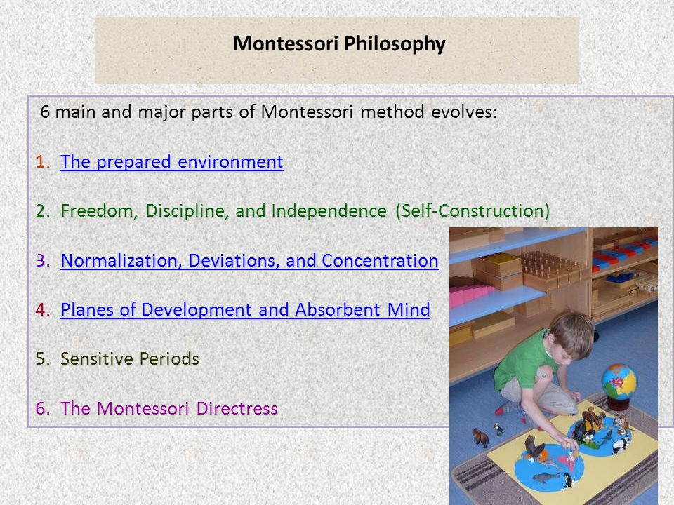 Montessori Philosophy 6 main and major parts of Montessori method evolves: 1.The prepared environment The prepared environmentThe prepared environment 2.Freedom, Discipline, and Independence (Self-Construction) 3.Normalization, Deviations, and Concentration Normalization, Deviations, and ConcentrationNormalization, Deviations, and Concentration 4.Planes of Development and Absorbent Mind Planes of Development and Absorbent MindPlanes of Development and Absorbent Mind 5.Sensitive Periods 6.The Montessori Directress