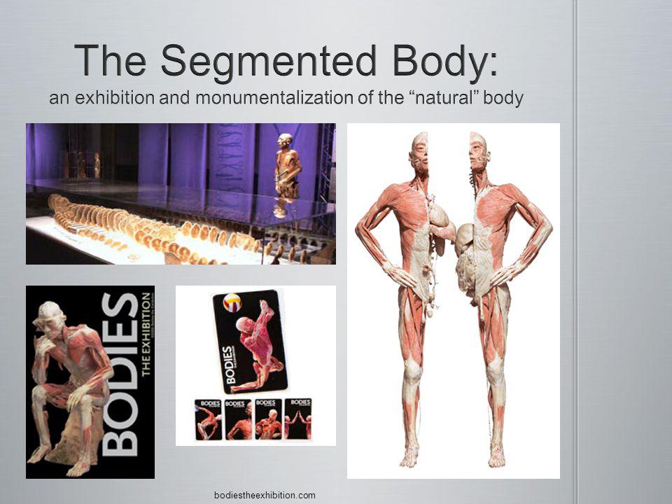 bodiestheexhibition.com