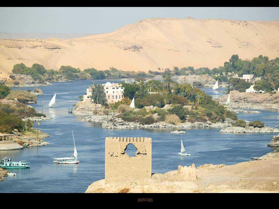 Fishing on Nile