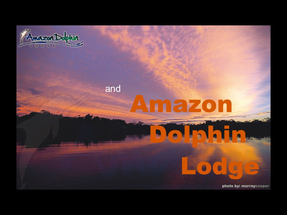and Amazon Dolphin Lodge