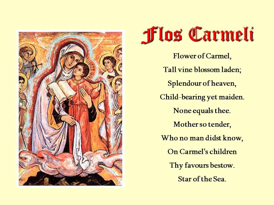 Flos Carmeli Flower of Carmel, Tall vine blossom laden; Splendour of heaven, Child-bearing yet maiden.