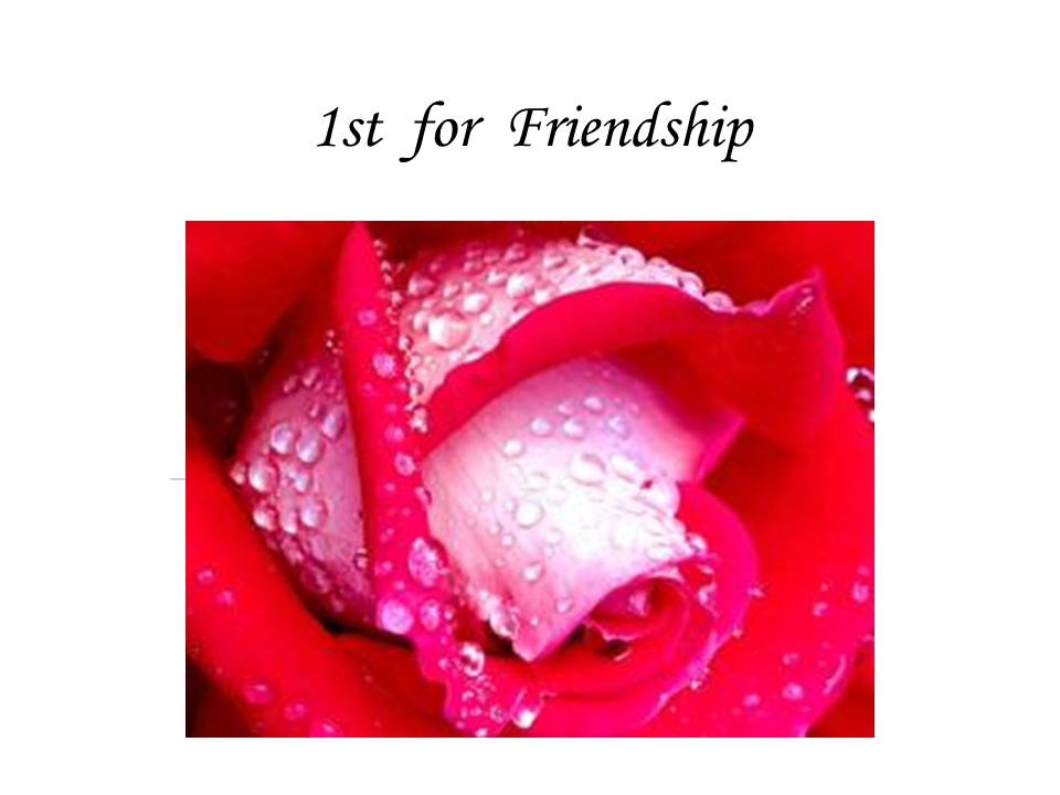 1st for Friendship