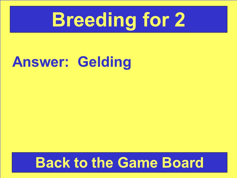 Answer: Gelding Back to the Game Board Breeding for 2