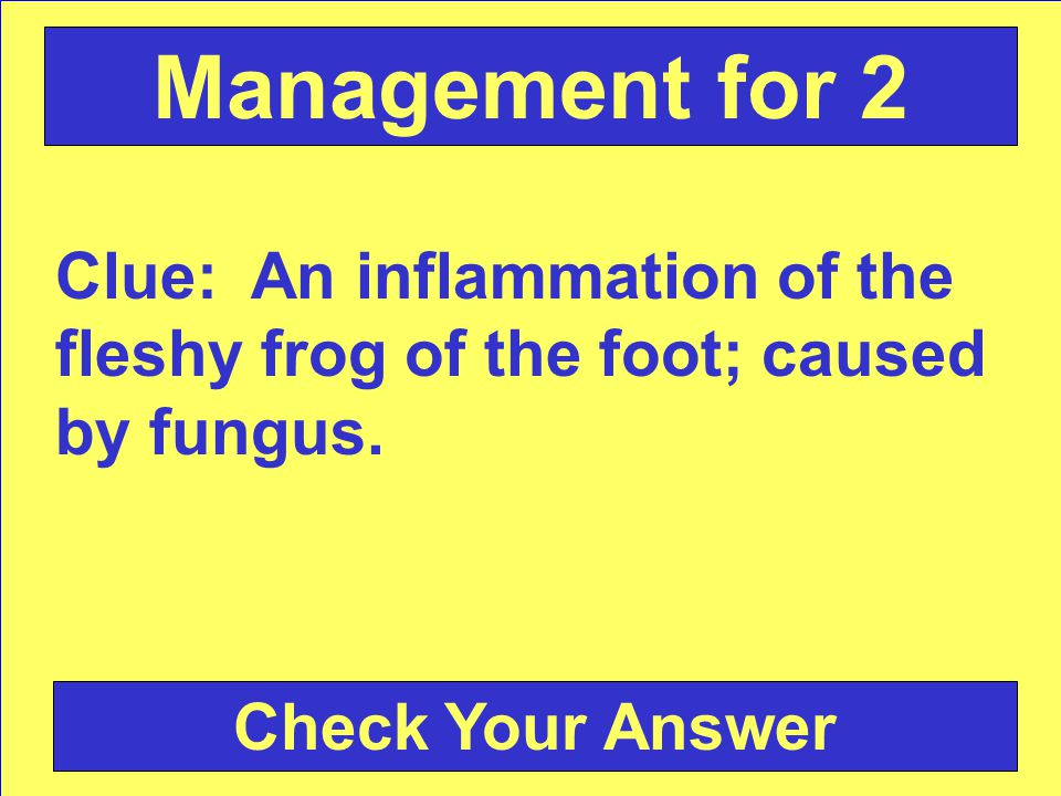 Answer: Thrush Back to the Game Board Management for 2