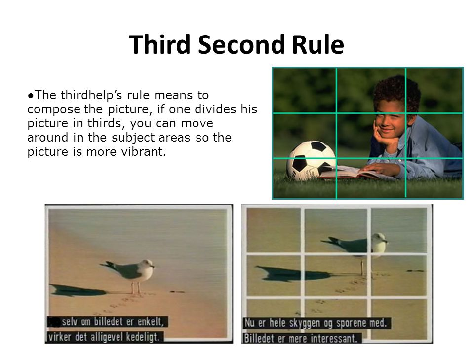 Third Second Rule The thirdhelps rule means to compose the picture, if one divides his picture in thirds, you can move around in the subject areas so the picture is more vibrant.