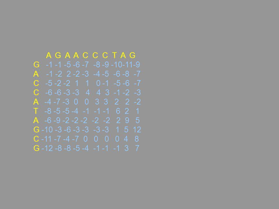 A G A A C C C T A G G -1 -1 -5 -6 -7 -8 -9 -10-11-9 A -1 -2 2 -2 -3 -4 -5 -6 -8 -7 C -5 -2 -2 1 1 0 -1 -5 -6 -7 C -6 -6 -3 -3 4 4 3 -1 -2 -3 A -4 -7 -3 0 0 3 3 2 2 -2 T -8 -5 -5 -4 -1 -1 -1 6 2 1 A -6 -9 -2 -2 -2 -2 -2 2 9 5 G -10 -3 -6 -3 -3 -3 -3 1 5 12 C -11 -7 -4 -7 0 0 0 0 4 8 G -12 -8 -8 -5 -4 -1 -1 -1 3 7
