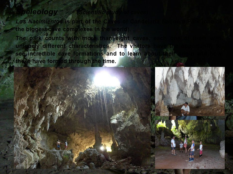 Speleology (Scientific study of caves) Los Nacimientos is part of the Caves of Candelaria National Park (one of the biggest cave complexes in the world).