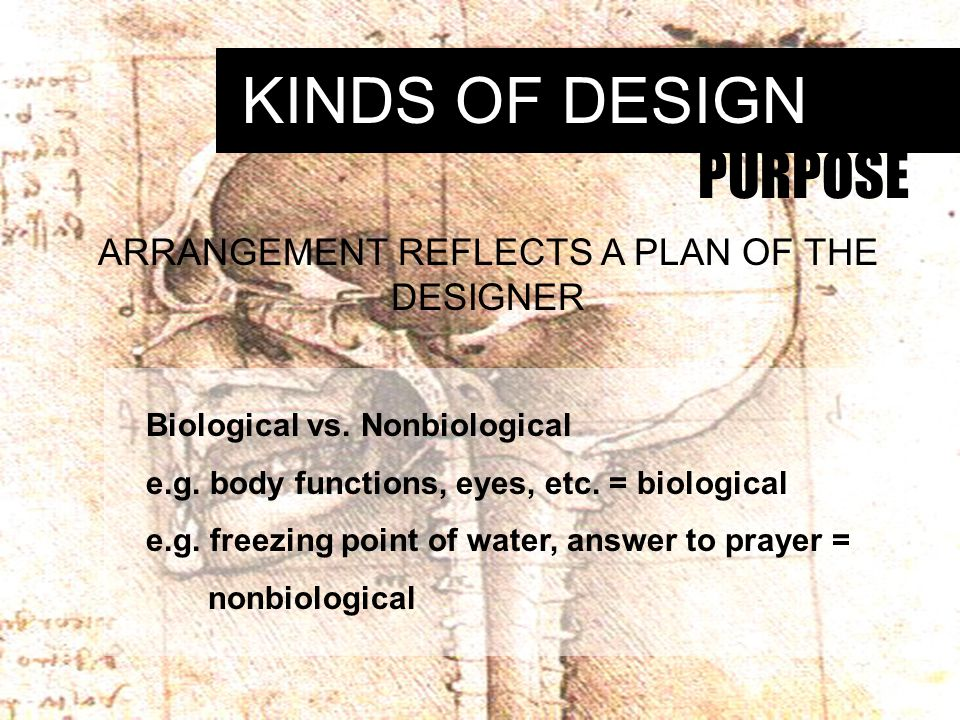 KINDS OF DESIGN PURPOSE ARRANGEMENT REFLECTS A PLAN OF THE DESIGNER Biological vs.