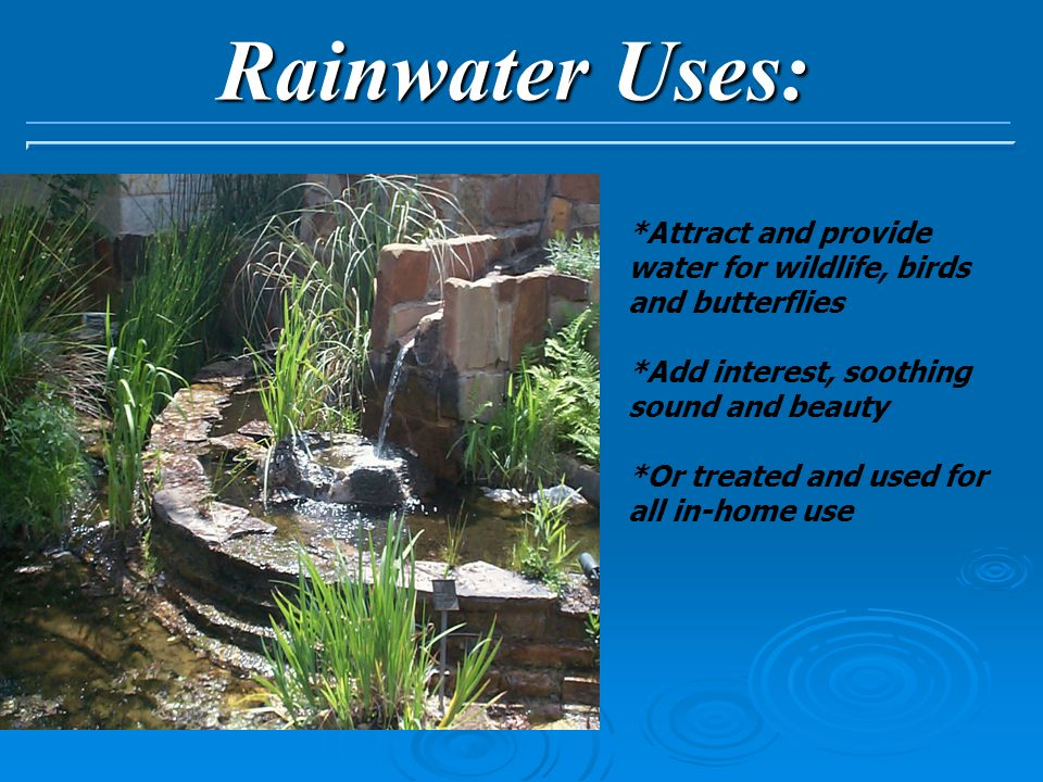 Rainwater Uses: *Attract and provide water for wildlife, birds and butterflies *Add interest, soothing sound and beauty *Or treated and used for all in-home use
