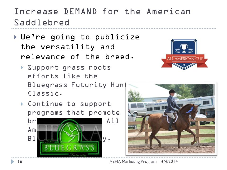 Increase DEMAND for the American Saddlebred 6/4/2014ASHA Marketing Program16 Were going to publicize the versatility and relevance of the breed.