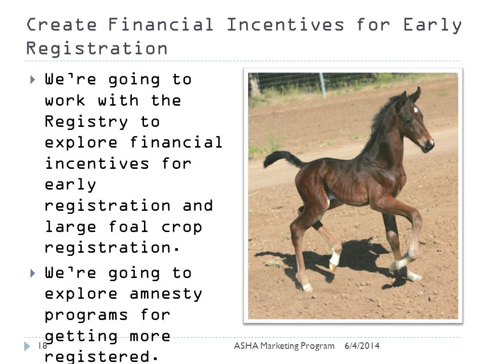 Create Financial Incentives for Early Registration 6/4/2014ASHA Marketing Program18 Were going to work with the Registry to explore financial incentives for early registration and large foal crop registration.
