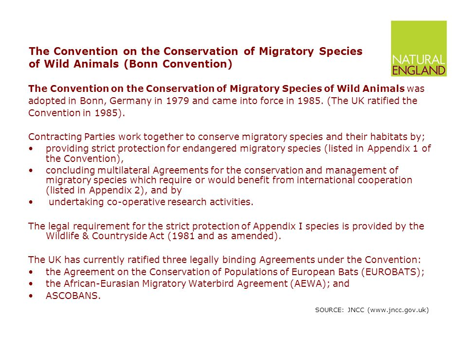 The Agreement on the Conservation of African-Eurasian Migratory Waterbirds (AEWA) The Agreement on the Conservation of African-Eurasian Migratory Waterbirds (AEWA) was concluded in The Hague, the Netherlands in 1995 and entered into force in November 1999.