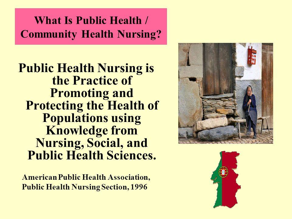 What Is Public Health / Community Health Nursing.